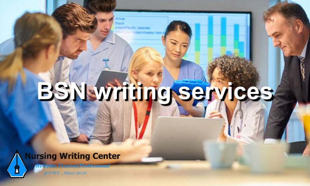 BSN writing services